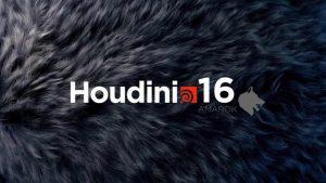 SideFX Hotiudini product key